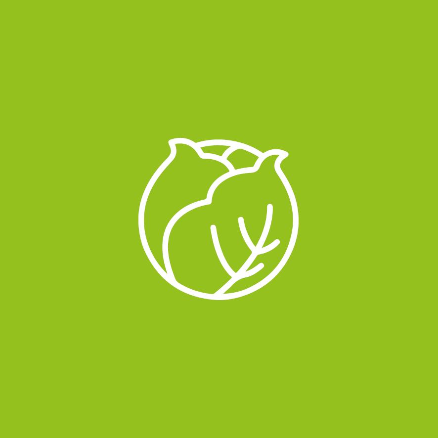 sam-le-jardinier-cote-potager-vert5