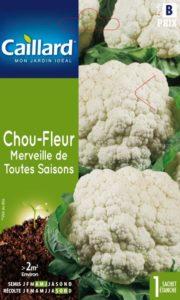 chou-fleur-merveille-de-toutes-saisons