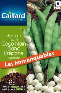 haricot-nain-a-ecosser-coco-nain-blanc-precoce