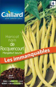 haricot-nain-mangetout-de-rocquencourt