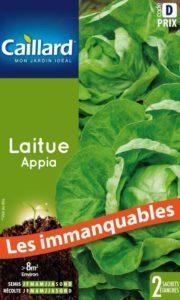laitue-appia