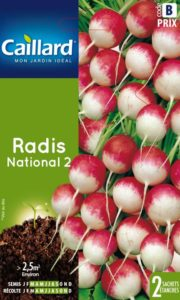 radis-national-2